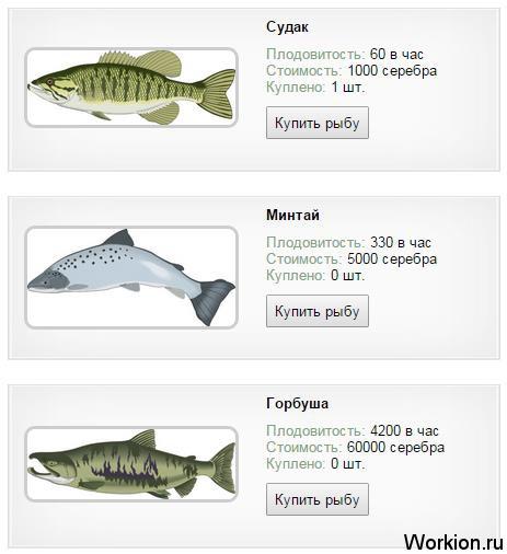 Real Fishing