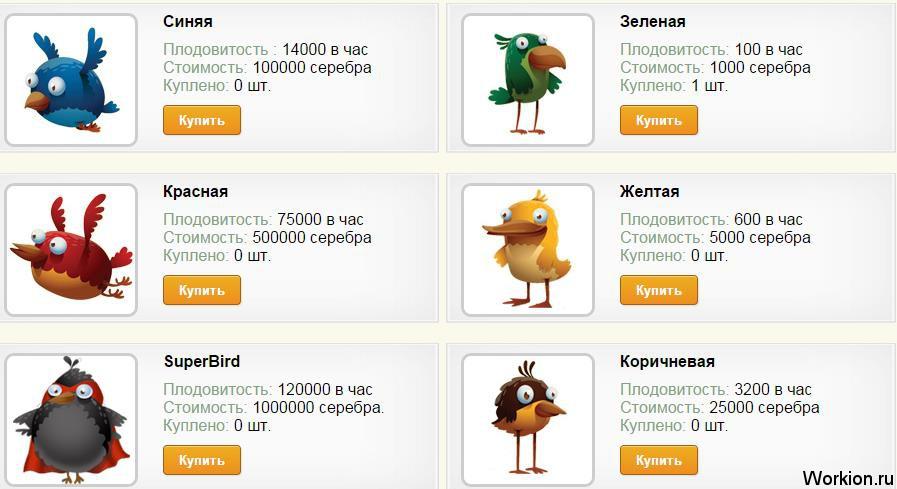 Birds Eggs