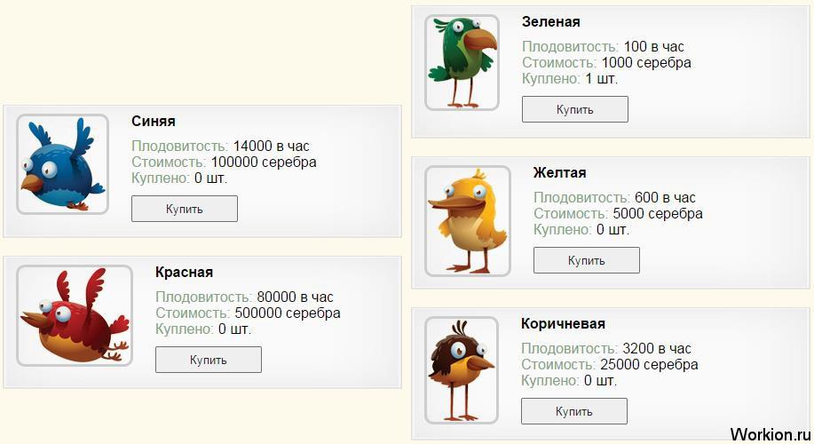 играть в птицы за деньги