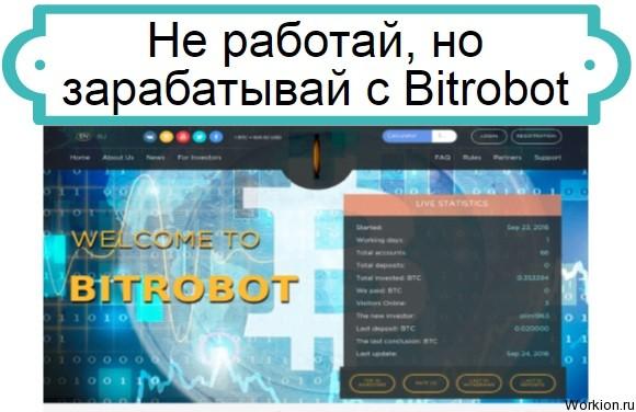 Bitrobot
