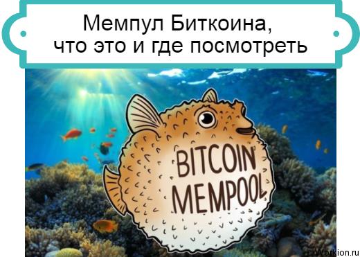 Мемпул Биткоина