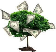 6 советов для инвесторов в ПАММ-счета