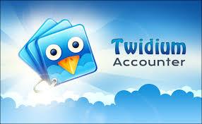 Twidium Accounter