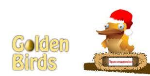 Как привлечь рефералов на Goldenbirds?
