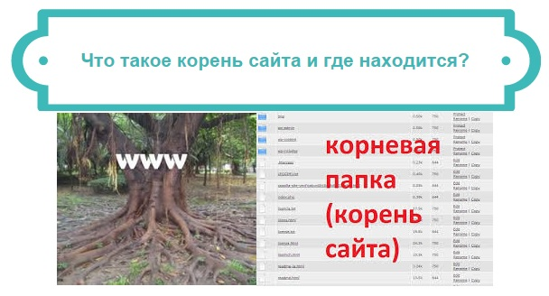 корень сайта