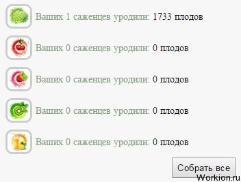 Игра Bestferma – 200% прибыльности в месяц (скам)