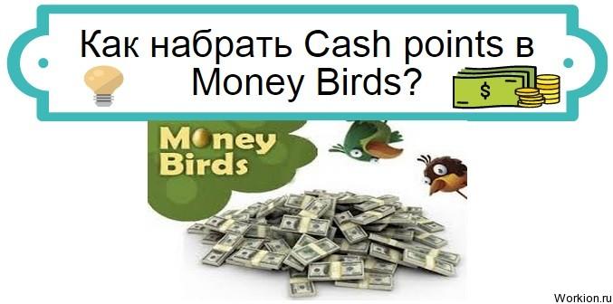 Cash points в Money Birds