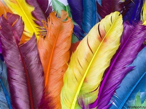 Как влияет цвет на людей?