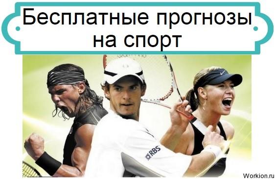 спорт название на ставки их