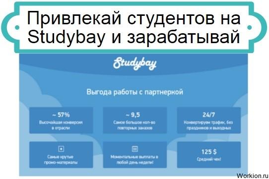 заработок на Studybay