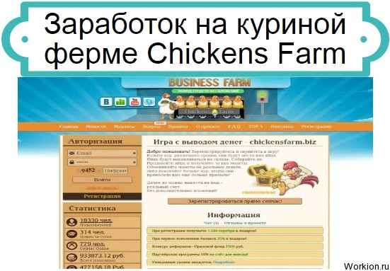 Chickens Farm