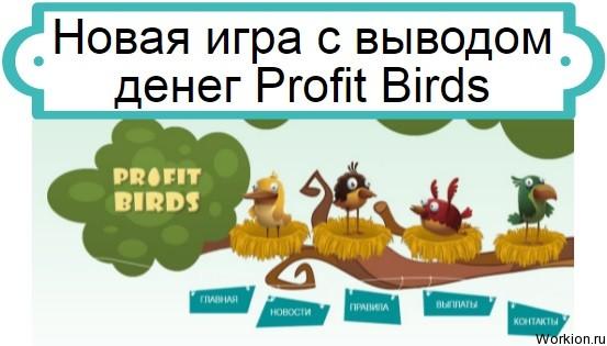 Profit Birds