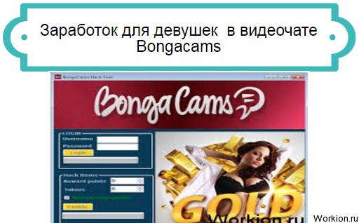 заработок в Bongacams