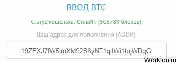 3 криптовалюты с самой высокой скоростью транзакций, купите в свой портфель эти монеты