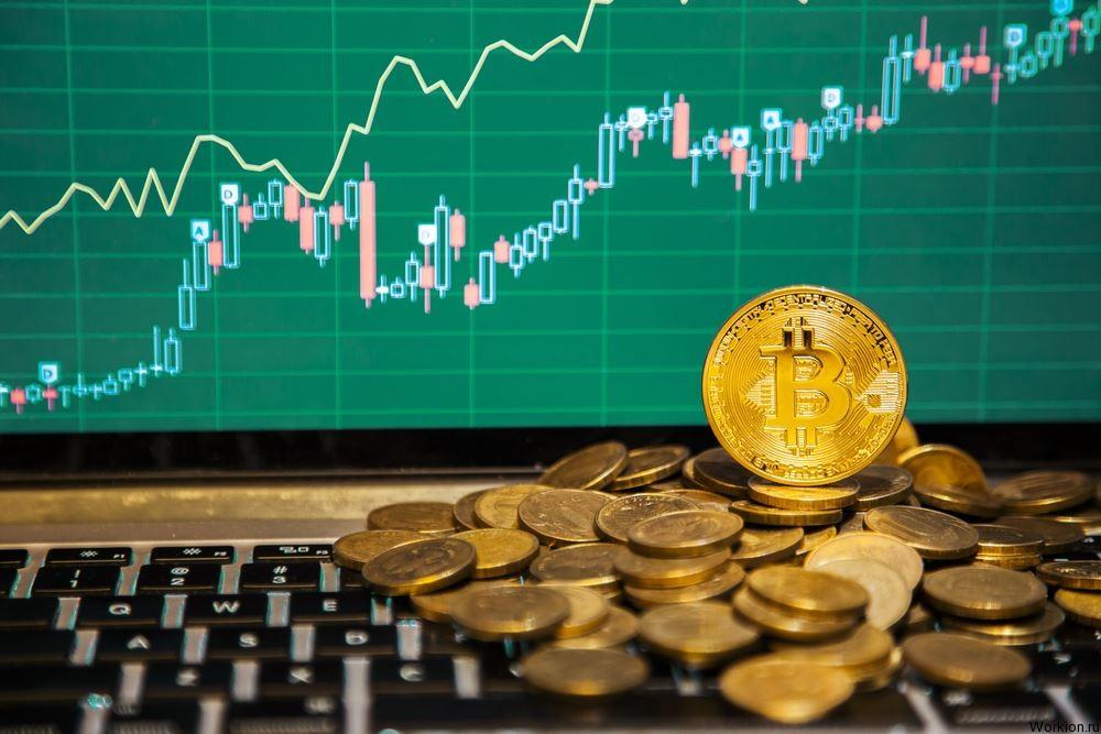 Фиатные и альткоиновые биржи криптовалют, что лучше