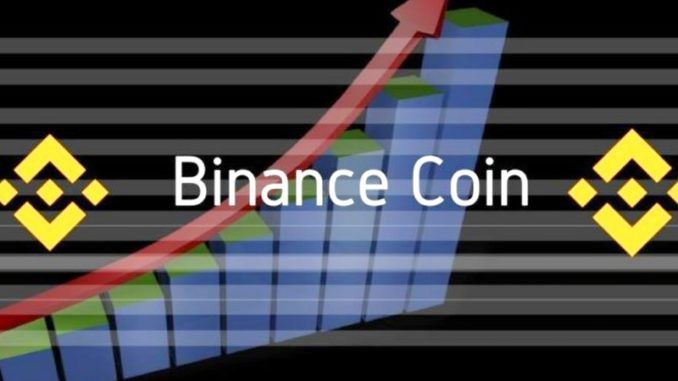 Криптовалюта Binance Coin – курс, прогноз, майнинг и сжигание монет