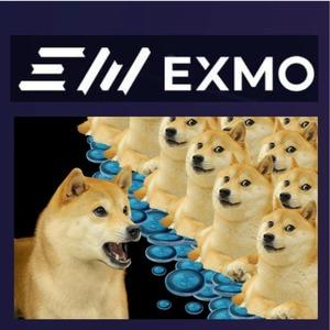exmo dogecoin