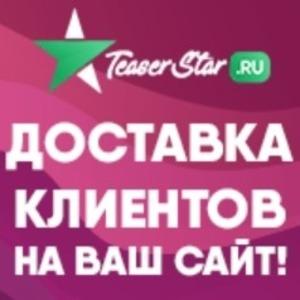 Teaser Star заработок