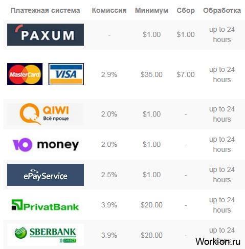 способы вывода денег с BunnyCam